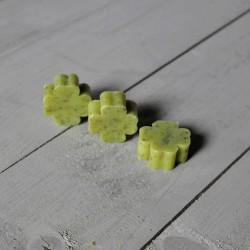 Sapone Quadrifoglio Piccolo Verde